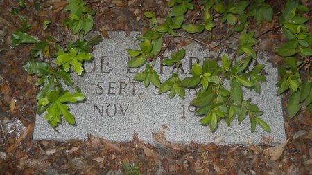 PARDUE, JOE ELLIS - Baldwin County, Alabama | JOE ELLIS PARDUE - Alabama Gravestone Photos