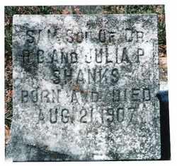 SHANKS, SAM - Butler County, Alabama | SAM SHANKS - Alabama Gravestone Photos