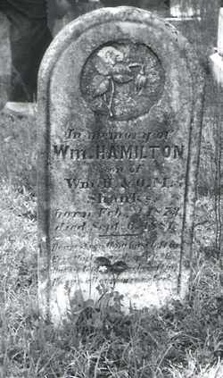SHANKS, WILLIAM HAMILTON - Butler County, Alabama | WILLIAM HAMILTON SHANKS - Alabama Gravestone Photos