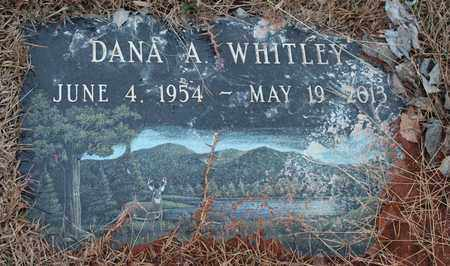 WHITLEY, DANA A - Calhoun County, Alabama | DANA A WHITLEY - Alabama Gravestone Photos
