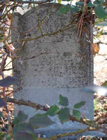COTHRAN, W E - Cherokee County, Alabama | W E COTHRAN - Alabama Gravestone Photos