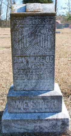 WESTER, AMY - Cherokee County, Alabama | AMY WESTER - Alabama Gravestone Photos