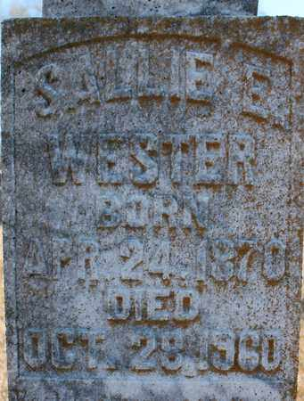 WESTER (CLOSEUP), SALLIE E - Cherokee County, Alabama | SALLIE E WESTER (CLOSEUP) - Alabama Gravestone Photos
