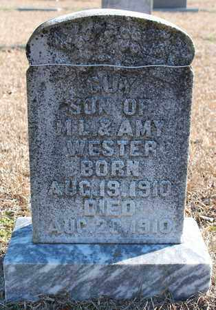 WESTER, GUY - Cherokee County, Alabama | GUY WESTER - Alabama Gravestone Photos