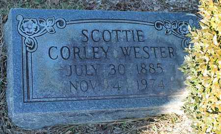 WESTER, SCOTTIE CORLEY - Cherokee County, Alabama | SCOTTIE CORLEY WESTER - Alabama Gravestone Photos