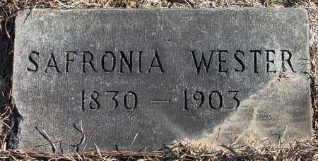 WESTER, SAFRONIA - Cherokee County, Alabama   SAFRONIA WESTER - Alabama Gravestone Photos