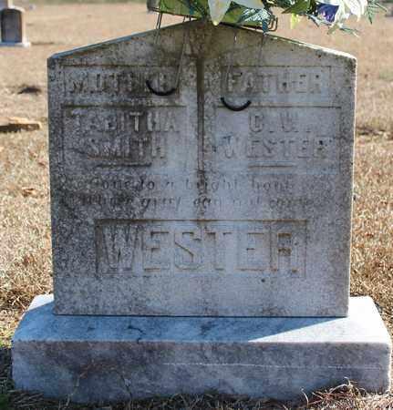 SMITH WESTER, TABITHA - Cherokee County, Alabama | TABITHA SMITH WESTER - Alabama Gravestone Photos