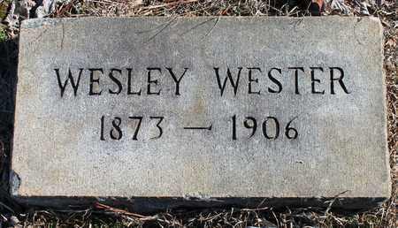 WESTER, WESLEY - Cherokee County, Alabama   WESLEY WESTER - Alabama Gravestone Photos