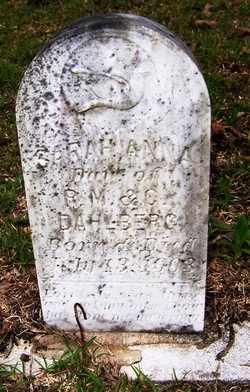DAHLBERG, SARAH ANNA - Choctaw County, Alabama   SARAH ANNA DAHLBERG - Alabama Gravestone Photos