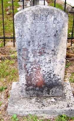 LONG, HARRY P. - Choctaw County, Alabama | HARRY P. LONG - Alabama Gravestone Photos