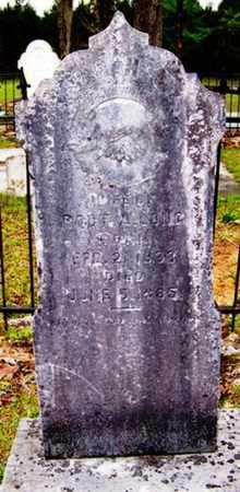 LONG, SARAH A. - Choctaw County, Alabama | SARAH A. LONG - Alabama Gravestone Photos
