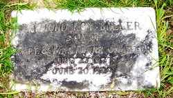 MILLER, RAYMOND ROY - Choctaw County, Alabama   RAYMOND ROY MILLER - Alabama Gravestone Photos