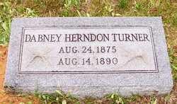 TURNER, DABNEY HERNDON - Choctaw County, Alabama | DABNEY HERNDON TURNER - Alabama Gravestone Photos