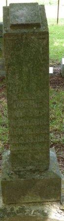 BRANOM, DOSHIE - Colbert County, Alabama   DOSHIE BRANOM - Alabama Gravestone Photos