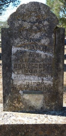 BRANSCOME, JAMES EDWARD - Colbert County, Alabama | JAMES EDWARD BRANSCOME - Alabama Gravestone Photos