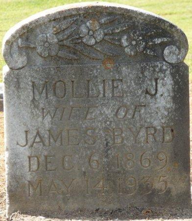 BYRD, MOLLIE J - Colbert County, Alabama | MOLLIE J BYRD - Alabama Gravestone Photos