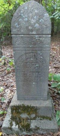 CENSHAW, FREEMAN - Colbert County, Alabama   FREEMAN CENSHAW - Alabama Gravestone Photos