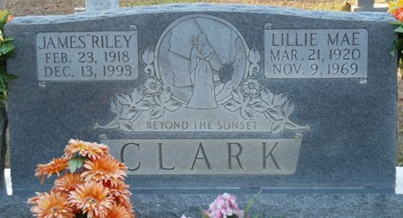 "CLARK, JAMES ""RILEY"" - Colbert County, Alabama 