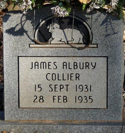 COLLIER, JAMES ALBURY - Colbert County, Alabama | JAMES ALBURY COLLIER - Alabama Gravestone Photos