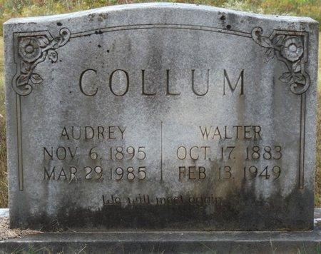 COLLUM, WALTER - Colbert County, Alabama | WALTER COLLUM - Alabama Gravestone Photos