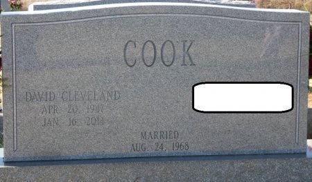 COOK, DAVID CLEVELAND - Colbert County, Alabama | DAVID CLEVELAND COOK - Alabama Gravestone Photos