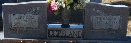 COPELAND, THOMAS M - Colbert County, Alabama   THOMAS M COPELAND - Alabama Gravestone Photos