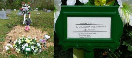DAVIS, CAROLYN CHRISTEEN - Colbert County, Alabama | CAROLYN CHRISTEEN DAVIS - Alabama Gravestone Photos