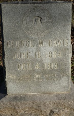 DAVIS, GEORGE W - Colbert County, Alabama | GEORGE W DAVIS - Alabama Gravestone Photos