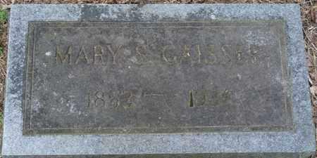 GAISSER, MARY SALENA - Colbert County, Alabama | MARY SALENA GAISSER - Alabama Gravestone Photos