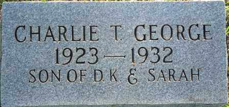 GEORGE, CHARLIE T - Colbert County, Alabama | CHARLIE T GEORGE - Alabama Gravestone Photos