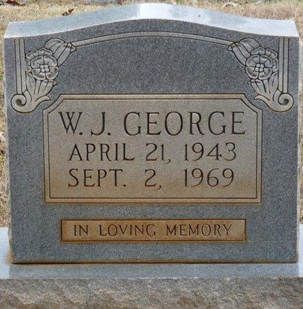 GEORGE, W.J. - Colbert County, Alabama | W.J. GEORGE - Alabama Gravestone Photos