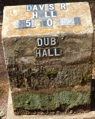 "HALL, DAVIS R ""DUB"" - Colbert County, Alabama | DAVIS R ""DUB"" HALL - Alabama Gravestone Photos"