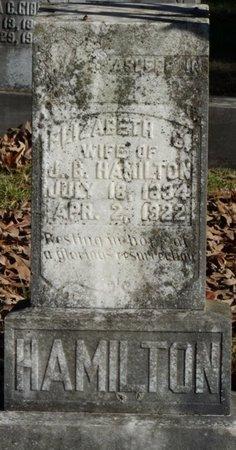 HAMILTON, ELIZABETH - Colbert County, Alabama | ELIZABETH HAMILTON - Alabama Gravestone Photos
