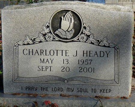 HEADY, CHARLOTTE J - Colbert County, Alabama | CHARLOTTE J HEADY - Alabama Gravestone Photos