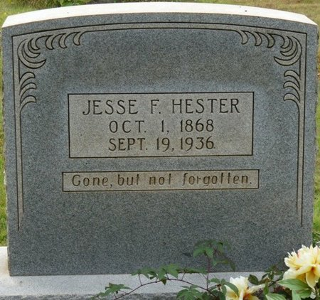 HESTER, JESSE F - Colbert County, Alabama | JESSE F HESTER - Alabama Gravestone Photos