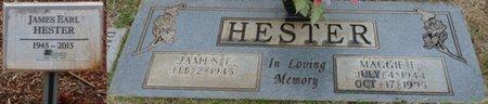 HESTER, MAGGIE F - Colbert County, Alabama | MAGGIE F HESTER - Alabama Gravestone Photos