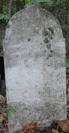 HOLIDAY, SHERMAN - Colbert County, Alabama | SHERMAN HOLIDAY - Alabama Gravestone Photos