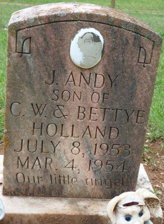 HOLLAND, J. ANDY - Colbert County, Alabama | J. ANDY HOLLAND - Alabama Gravestone Photos