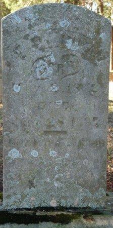 INMAN, JOHN DONLEY - Colbert County, Alabama | JOHN DONLEY INMAN - Alabama Gravestone Photos