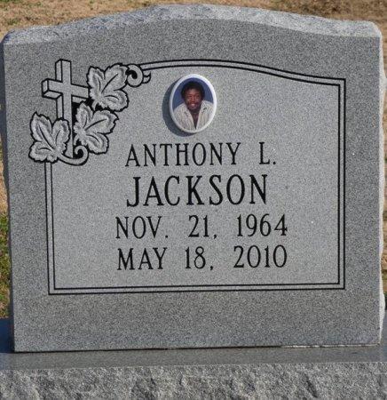 JACKSON, ANTHONY L - Colbert County, Alabama | ANTHONY L JACKSON - Alabama Gravestone Photos