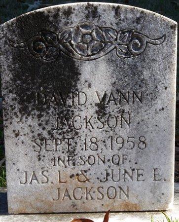 JACKSON, DAVID VANN - Colbert County, Alabama | DAVID VANN JACKSON - Alabama Gravestone Photos