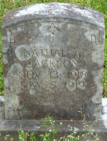JACKSON, NATHAL A - Colbert County, Alabama | NATHAL A JACKSON - Alabama Gravestone Photos
