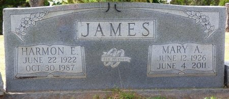 BYRD JAMES, MARY AGNES - Colbert County, Alabama   MARY AGNES BYRD JAMES - Alabama Gravestone Photos