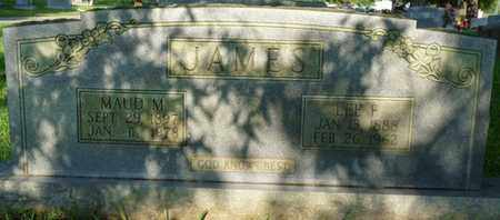 JAMES, LEE F - Colbert County, Alabama | LEE F JAMES - Alabama Gravestone Photos