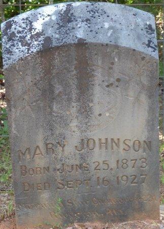 JOHNSON, MARY - Colbert County, Alabama   MARY JOHNSON - Alabama Gravestone Photos