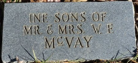 MCVAY, INFANT SONS - Colbert County, Alabama | INFANT SONS MCVAY - Alabama Gravestone Photos