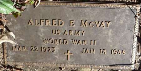 MCVAY (VETERAN WWII), ALFRED E - Colbert County, Alabama | ALFRED E MCVAY (VETERAN WWII) - Alabama Gravestone Photos