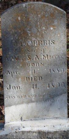 MORRIS, J.P. - Colbert County, Alabama | J.P. MORRIS - Alabama Gravestone Photos