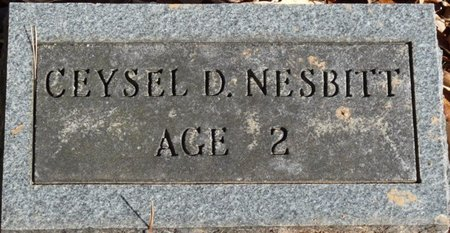 NESBITT, CEYSEL D - Colbert County, Alabama | CEYSEL D NESBITT - Alabama Gravestone Photos