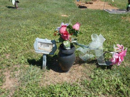 POUNDERS, TERESA MAE D - Colbert County, Alabama | TERESA MAE D POUNDERS - Alabama Gravestone Photos